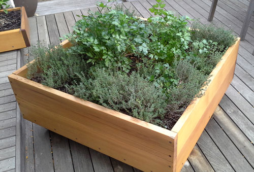 Future Environment Garden Builders Planter Box